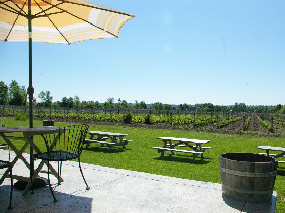 Bergeron Estate Winery & Cider Company Featured Image