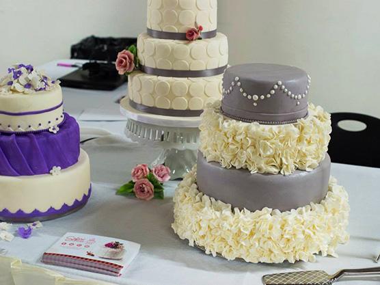 Safari Cake Boutique Featured Image