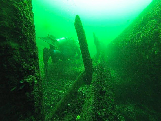 Dive Brockville Adventure Centre & Abucs Scuba Charters Featured Image