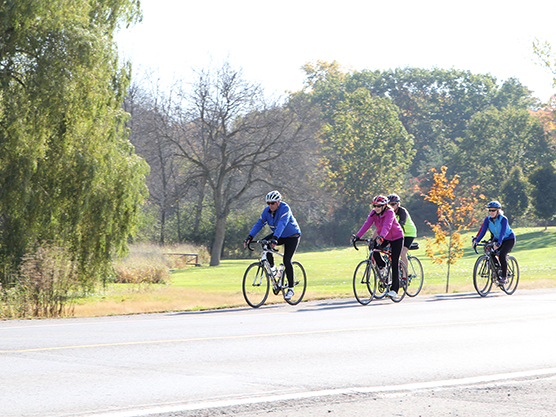L&A County Trails (Cycling Routes) Featured Image