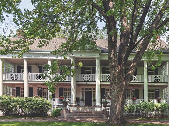 Montrose Inn & Tea Room Featured Image