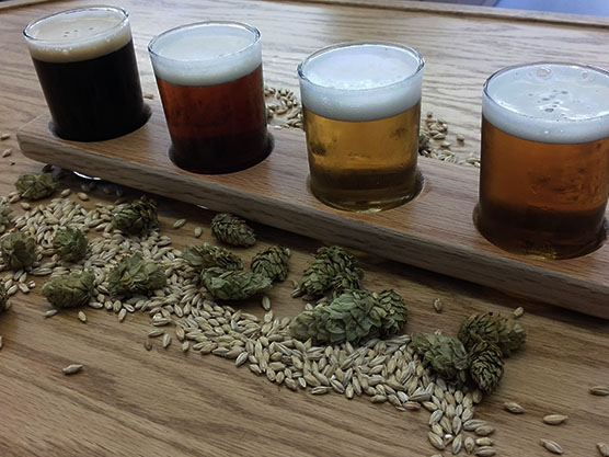 Wild Card Brewing Company Featured Image