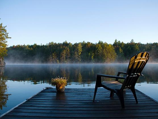 Cedar Forest Park Featured Image