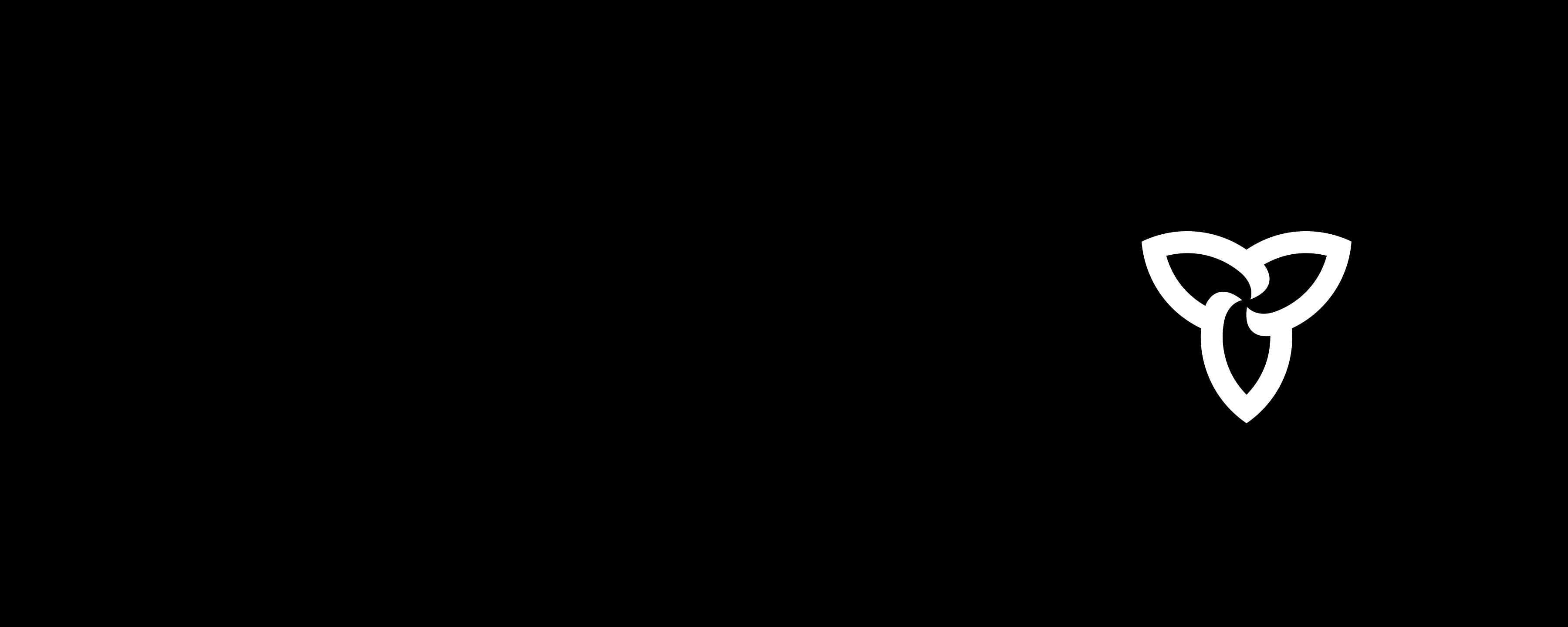 ON_POS_LOGO_RGB
